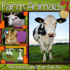 farm-animals-facts-book